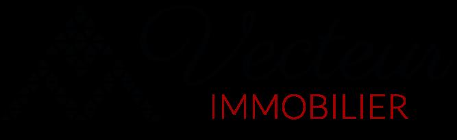 Logo Vecteur Immobilier